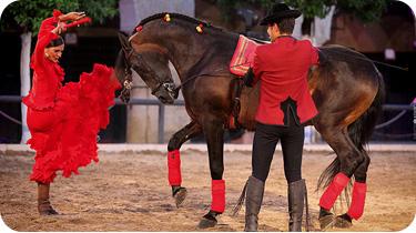 """Espectáculo Ecuestre """"Pasión y Duende del Caballo Andaluz"""""""