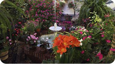Festival de los patios